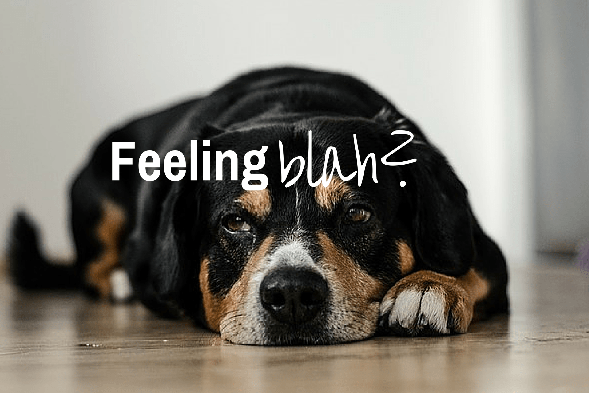 Feeling 'blah'?  Here's what you can do.